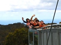 natiive Team Building Illawarra Fly